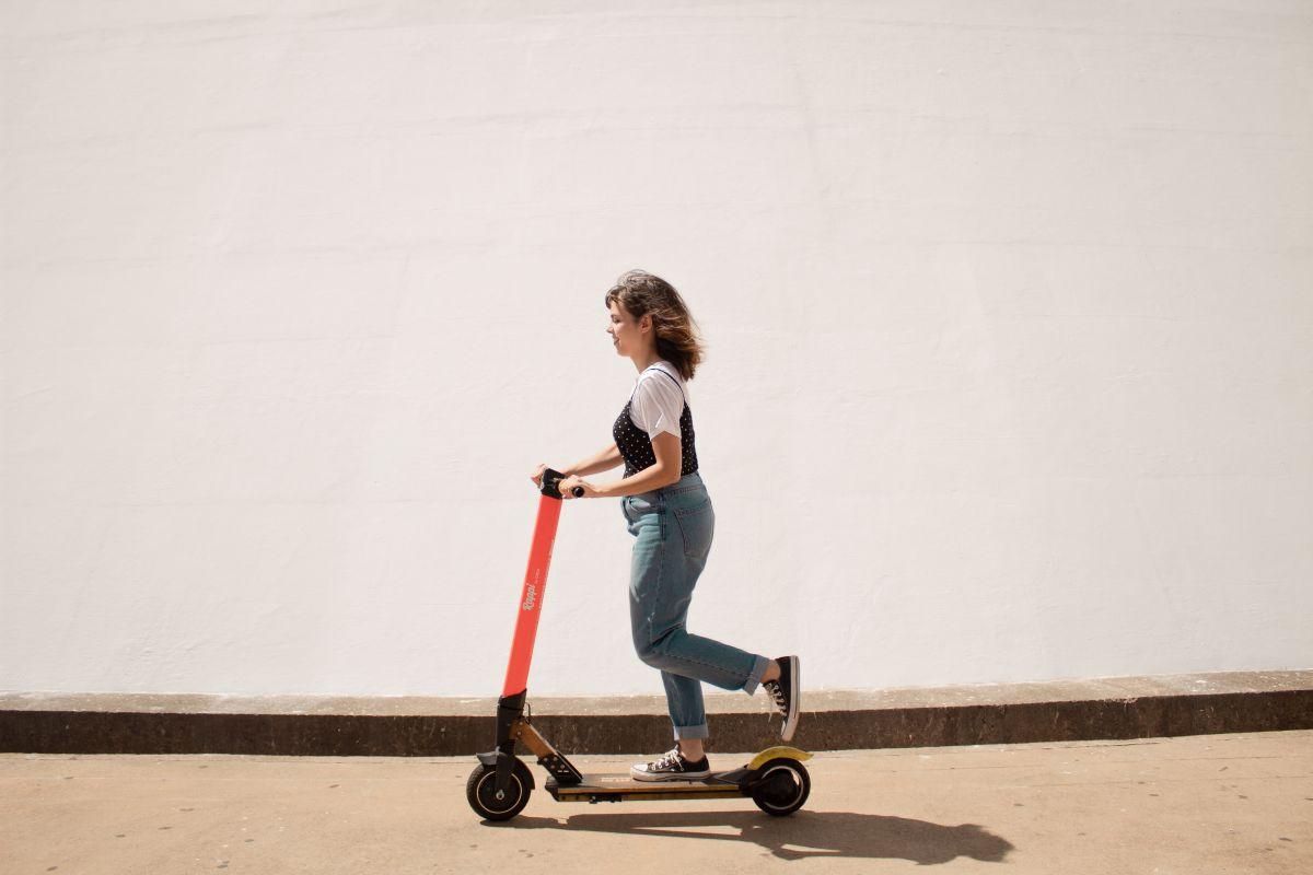 električni skiro nosilnost 150 kg